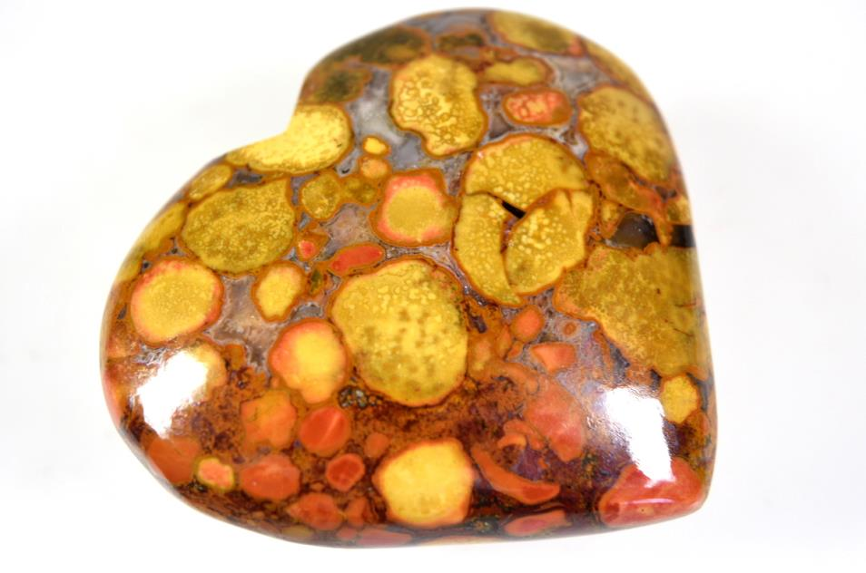 King Cobra Orbicular Jasper Hearts for sale