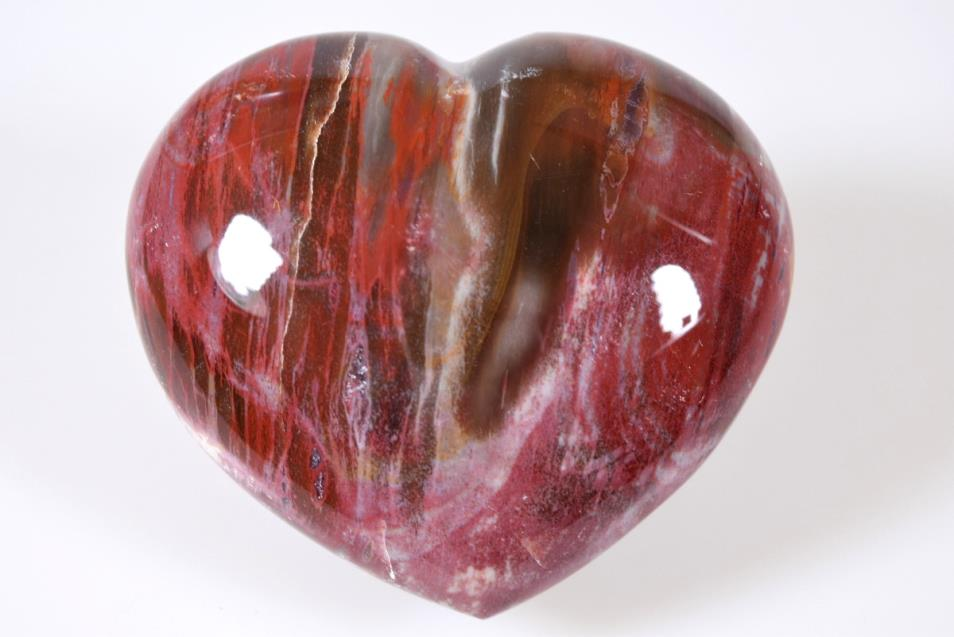 Buy Fossil Wood Hearts Online