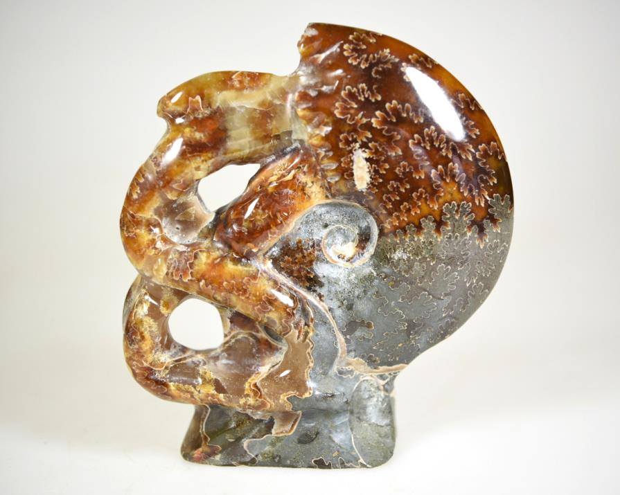 Ammonite Carving 9.5cm | Image 1