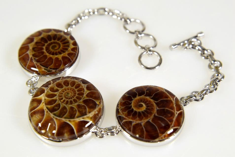 Ammonite Bracelet 25grams | Image 1