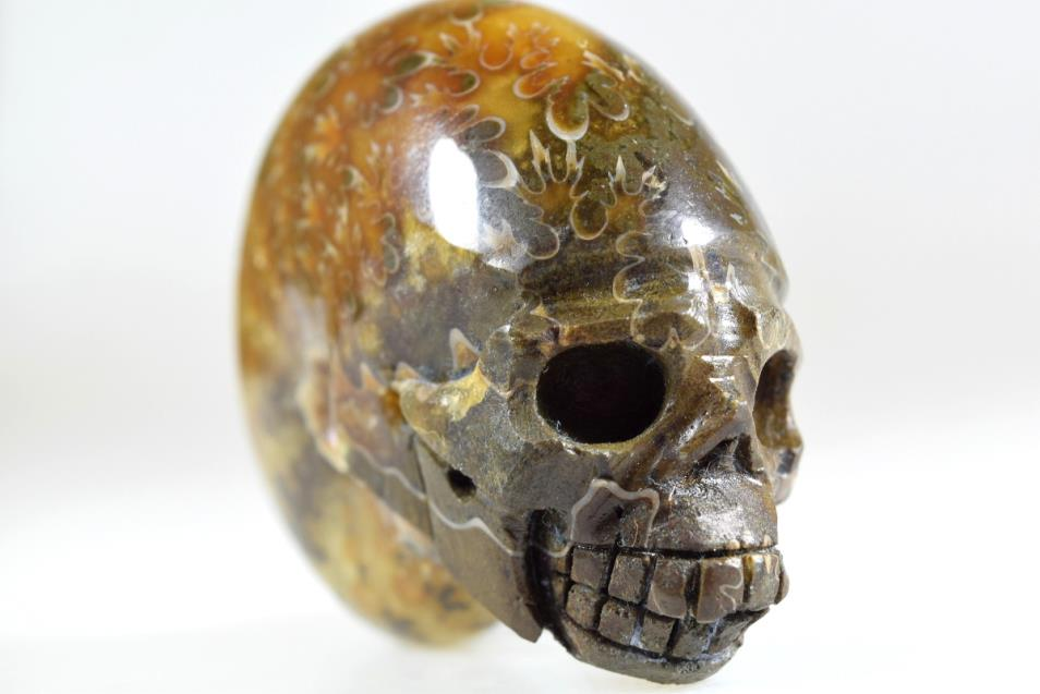 Ammonite Skull Carving 7.6cm | Image 1