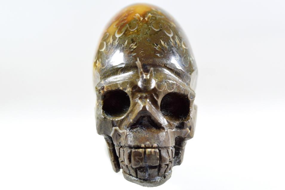 Ammonite skull carving fossils for sale