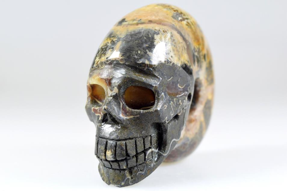 Ammonite Skull Carving 8.3cm | Image 1