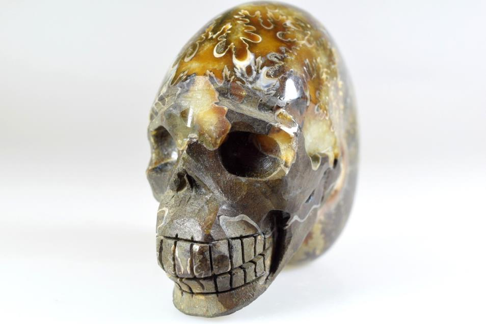 Ammonite Skull Carving 10.3cm | Image 1
