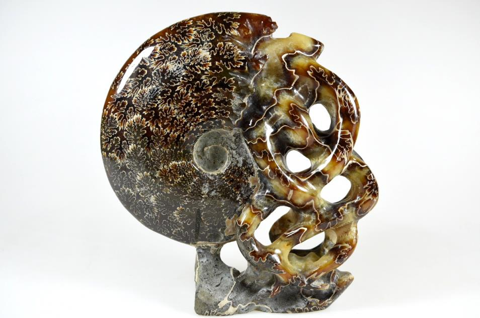 Ammonite Carving 15.2cm | Image 1