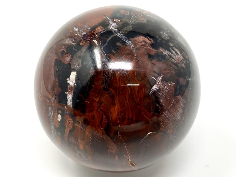 Fossil Wood Sphere 7cm | Image 1
