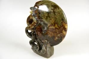 Ammonite Carving 17.5cm | Image 5