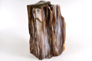 Agatized Fossil Wood 21cm | Image 7