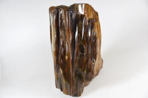 Agatized Fossil Wood 16cm | Image 4