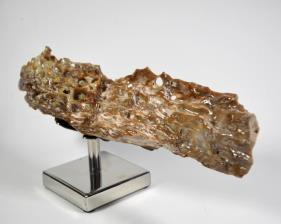 Agatized Fossil Wood 41cm | Image 4