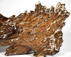 Agatized Fossil Wood 39.5cm | Image 3