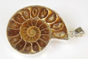 Ammonite Pendant 15.2grams | Image 2