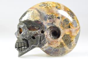 Ammonite Skull Carving 8.3cm | Image 3