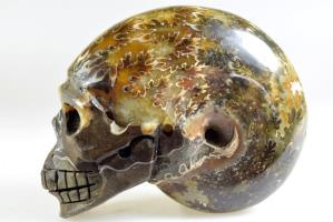 Ammonite Skull Carving 10.3cm | Image 3