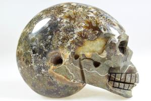 Ammonite Skull Carving 10.3cm | Image 7