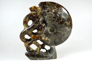 Ammonite Carving 15.2cm | Image 5
