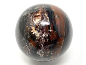 Fossil Wood Sphere 7cm | Image 3