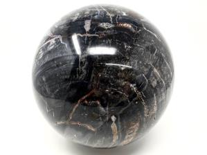 Fossil Wood Sphere Very Large 20cm | Image 4