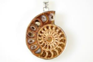 Ammonite Pendant 13grams | Image 2